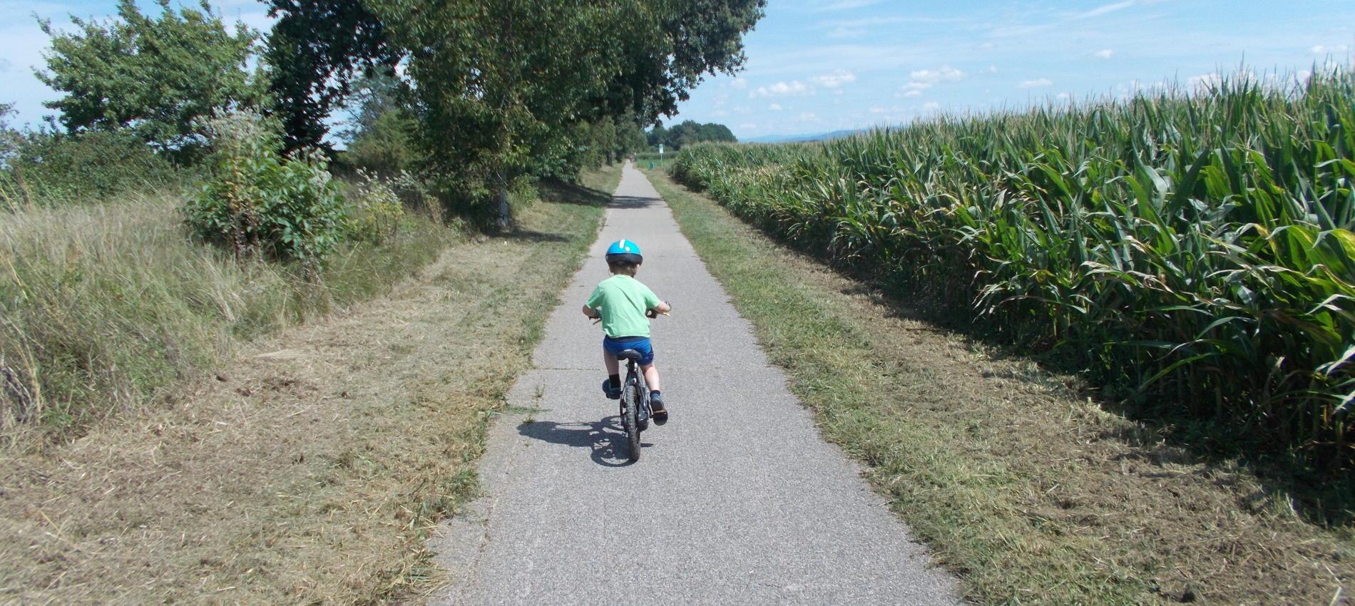 CYCL'O TERRE bureau d'études environnement mobilité