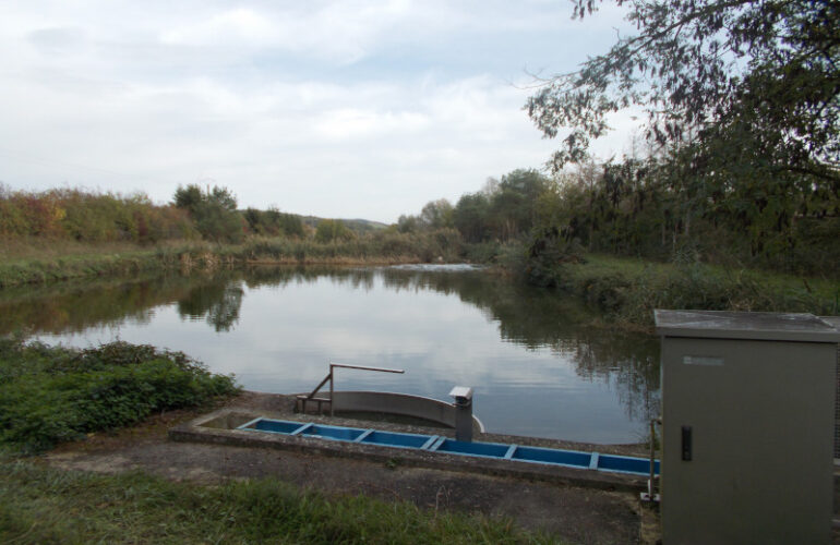 CYCL'O TERRE bureau d'étude environnement station d'épuration lagune Herbitzheim